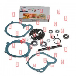 Water Pump Repair Kit MF 152.097[OMP]