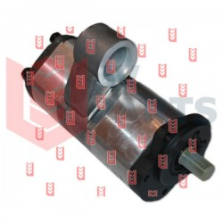 Two-section hydraulic pump 3816909M91[Best-pump]